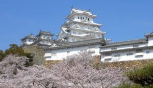 姫路城 桜 三の丸公園