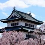 弘前公園の桜2017の見頃と開花予想。桜まつりやライトアップは?