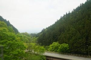 羊山公園 山 道路