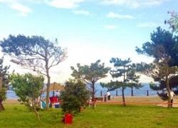 海辺 場所 バーベキュー