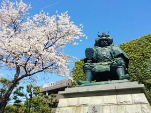 武田信玄の銅像と桜