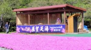 富士芝桜 展望足湯
