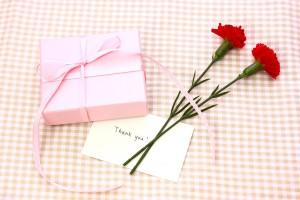 プレゼント カーネーション メッセージカード