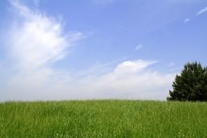 青空 草原