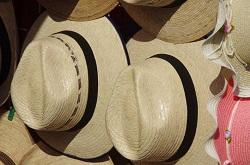 パナマ帽 デザイン