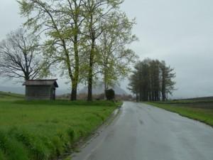 丘の上 雨 小屋