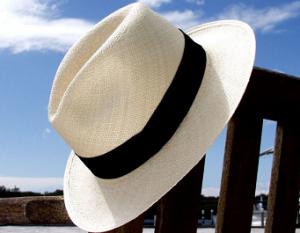 パナマ帽 青空