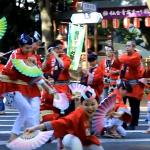 仙台 青葉祭り すずめ踊り