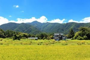 日本の田舎の風景 夏