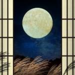 月 すすき