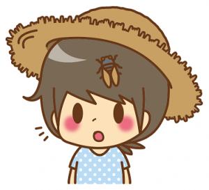 女の子 麦わら帽子 セミ