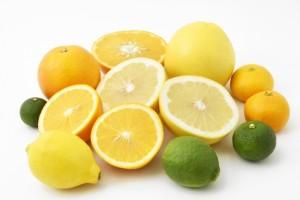 柑橘系 フルーツ