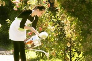 植木に水やりをする女性