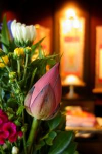 お盆 お花