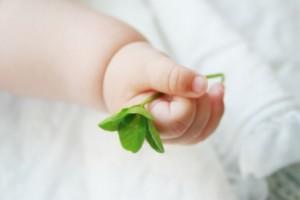 赤ちゃん 手 四葉
