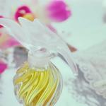 薫る!レディース香水人気ランキング!30代・40代におすすめをご紹介。