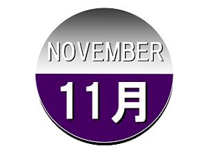 NOVEMBER 11月