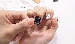 指 爪 シール