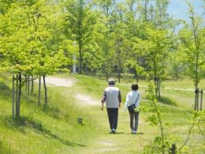老夫婦 散歩 自然