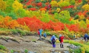 紅葉 登山