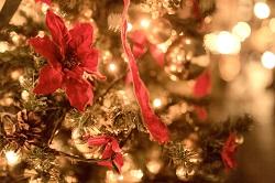 クリスマスツリー 飾り付け