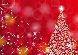 クリスマスツリー 星