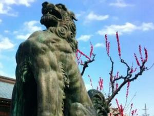 結城神社 狛犬