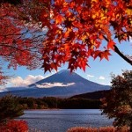 富士山 河口湖 紅葉