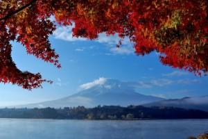 富士山 紅葉 河口湖
