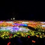 昭和記念公園イルミネーション2017。花火の日程や時間は?