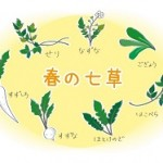 春の七草の覚え方。意味や漢字の書き方は?春の七草粥とは?
