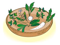 春の七草 意味