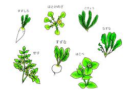 春の七草 種類