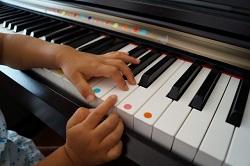 ピアノ シール