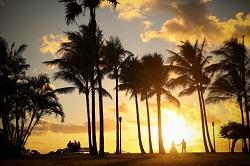 ハワイ 挙式 夕景