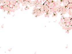 桜 国の象徴