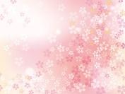 ピンク フォト