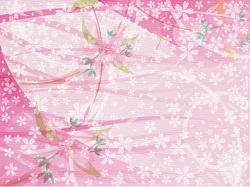 桜 ピンク