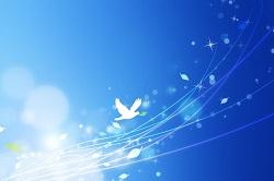 青空に羽ばたく鳥 イラスト