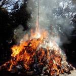 どんど焼きをする東京都内の神社おすすめは?アクセス方法。