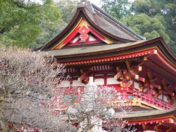 太宰府天満宮 神社