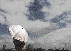 長雨 風景