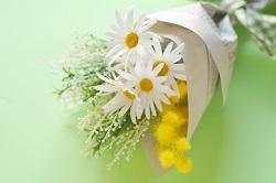 ミモザ 花束
