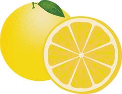 果物 グレープフルーツ