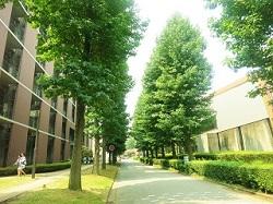 大学 キャンパス