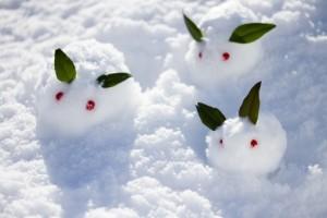 雪のうさぎ