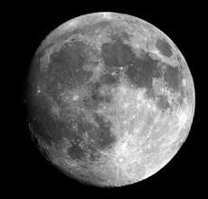 月の土地 変わり種