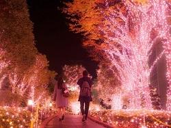 クリスマス 夜 イルミネーション カップル