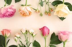 お花 デザイン