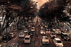 黄砂 道路